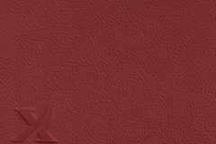 39165-raspberry