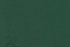 69117-opal-green