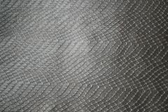 motif-kingstone